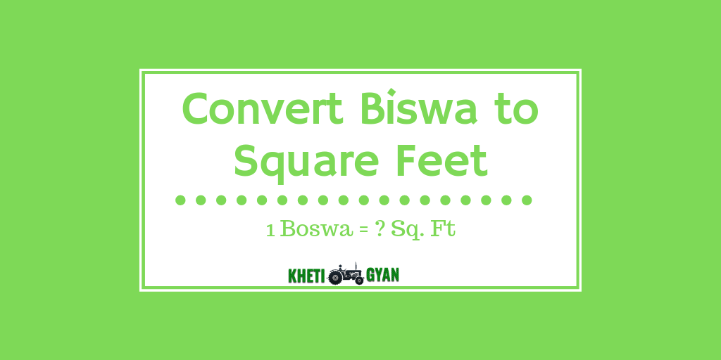 Convert Biswa to Square Feet