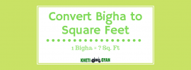 Convert bigha to Square Feet