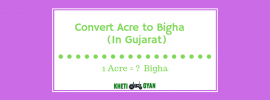 Convert Acre to Bigha (In Gujarat)