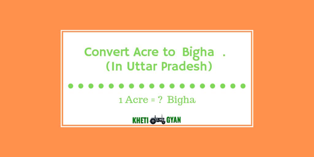 Convert Acre to Bigha in Uttar pradesh