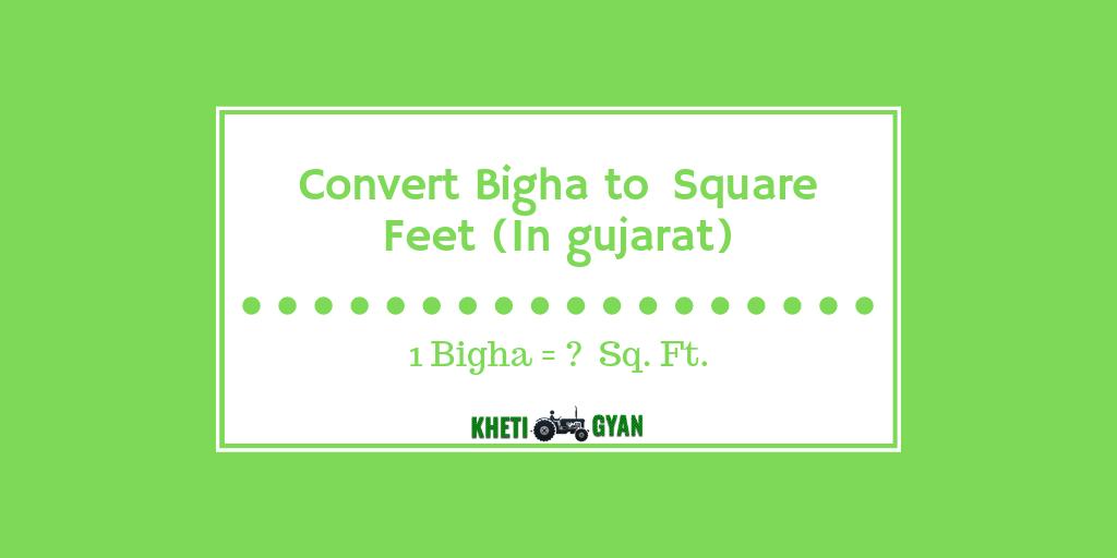 Convert Bigha to square gujarat