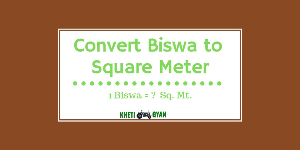 Convert Biswa to square meter