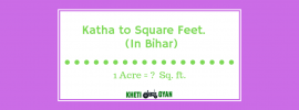 Convert Katha to square feet in bihar (1)