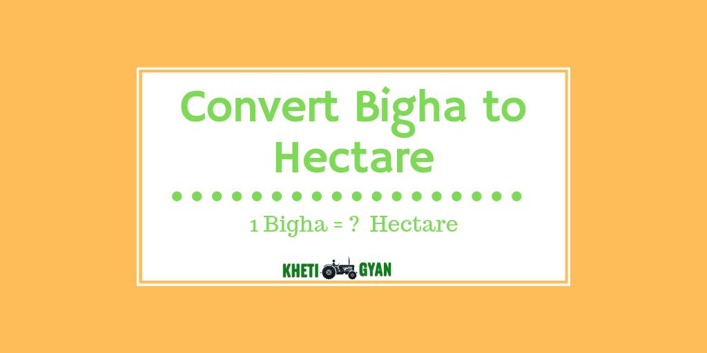 Convert bigha to hectare