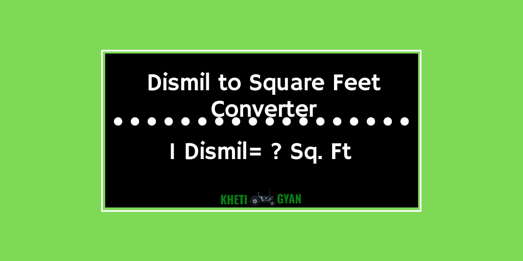 Dismil to Square Feet Converter
