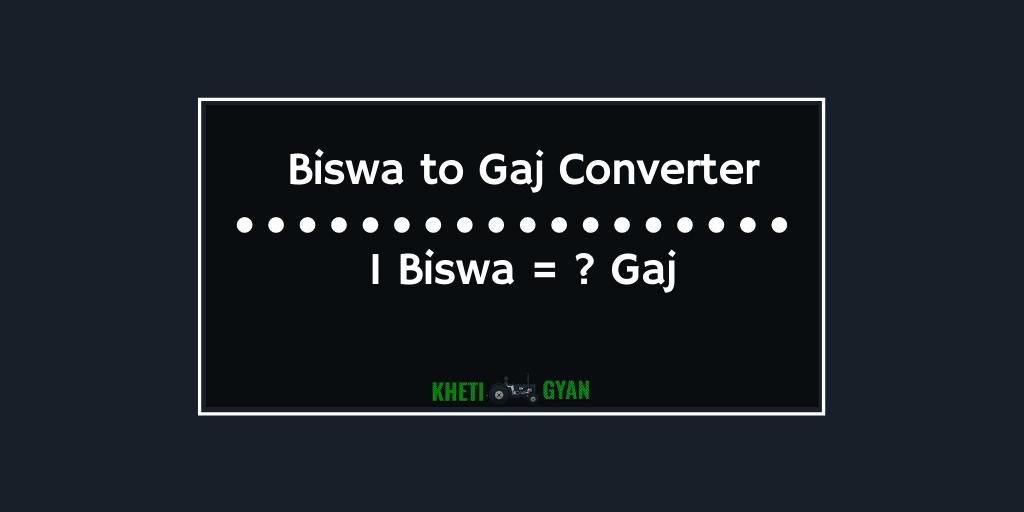 Biswa to Gaj Converter